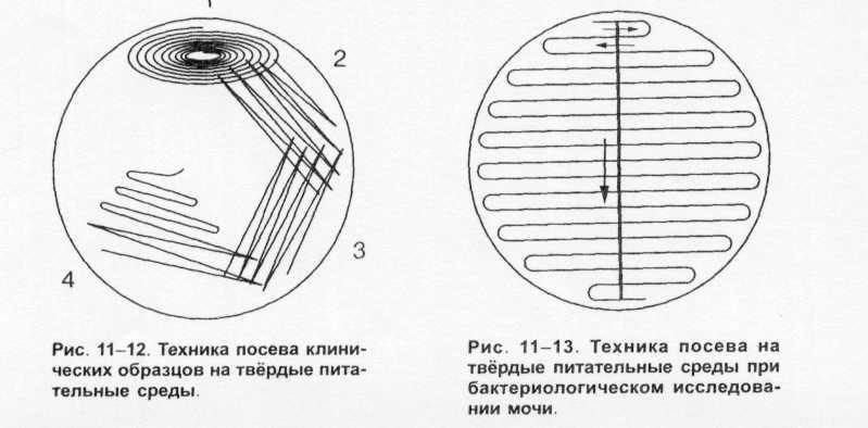 http://refbest.ru/files/11/refbest_ru_58828_ce78a99aa364600b78e45ced08946358.html_files/rId8.jpg