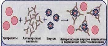 http://ok-t.ru/studopedia/baza6/1115496601351.files/image016.jpg