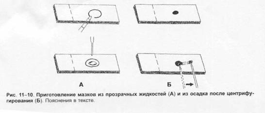 http://baza-referat.ru/dopb38290.zip