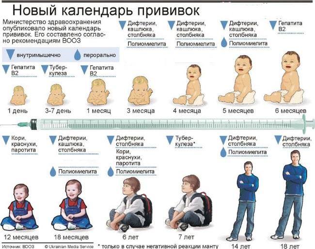 http://deti-nawe-vse.ru/wp-content/uploads/2012/11/calendar-privivok.jpg