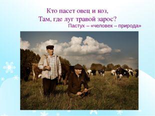 Кто пасет овец и коз, Там, где луг травой зарос? Пастух – «человек – природа»