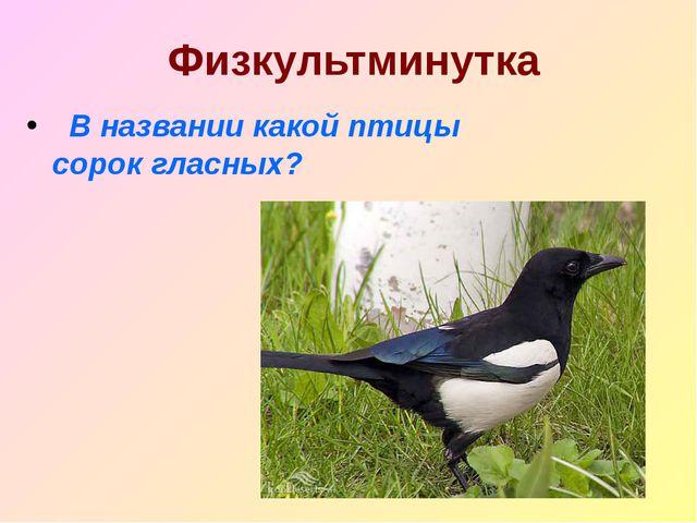 Физкультминутка В названии какой птицы сорок гласных?