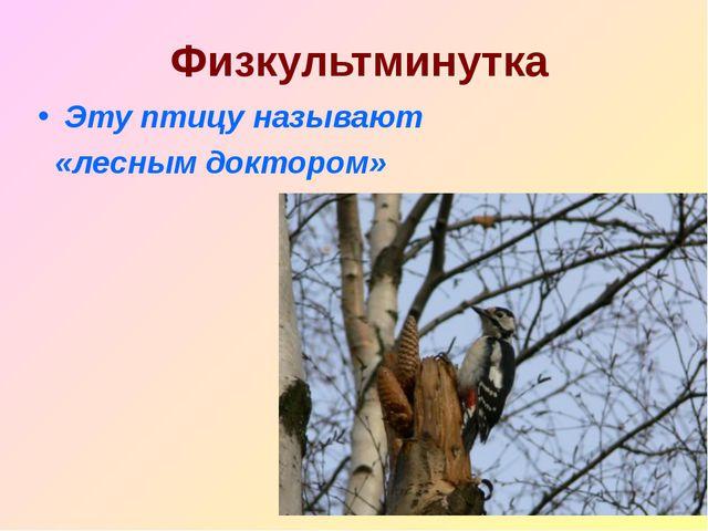 Физкультминутка Эту птицу называют «лесным доктором»