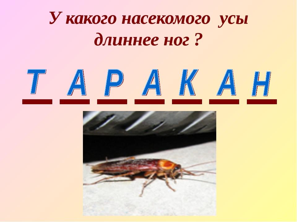 У какого насекомого усы длиннее ног ?