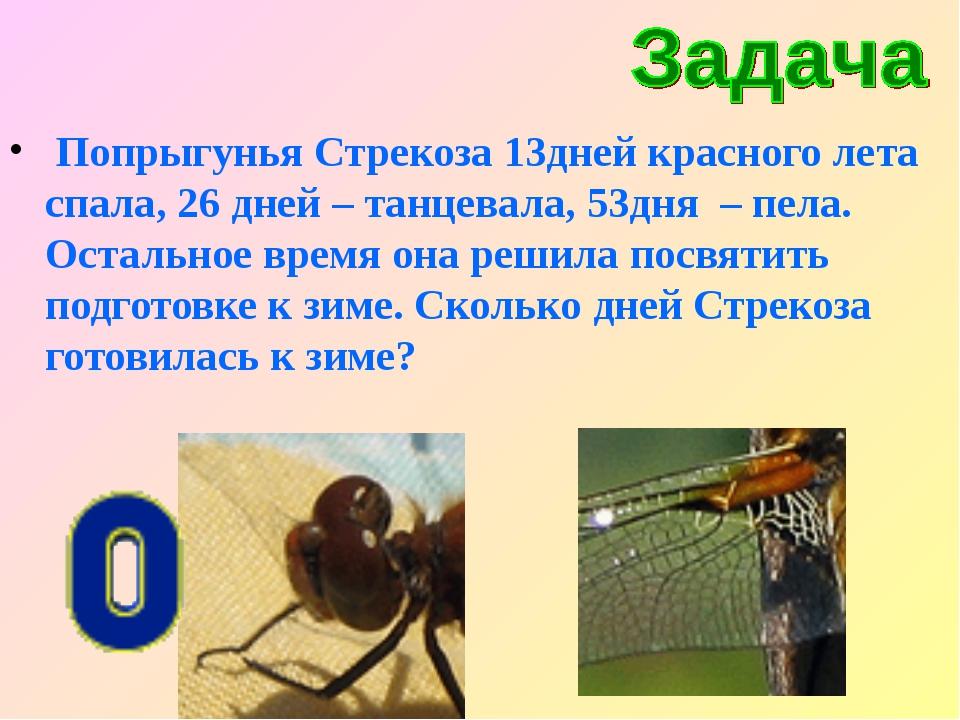 Попрыгунья Стрекоза 13дней красного лета спала, 26 дней – танцевала, 53дня –...