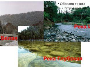 Река Белая Река Глубокая Река Иня