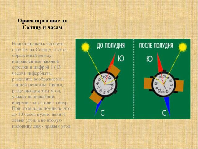 Ориентирование по Солнцу и часам Надо направить часовую стрелку на Солнце, и...