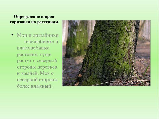 Определение сторон горизонта по растениям Мхи и лишайники — тенелюбивые и вла...