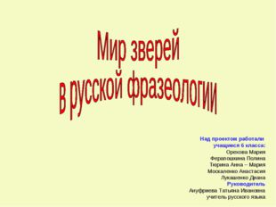 Над проектом работали учащиеся 6 класса: Орехова Мария Ферапошкина Полина Тю