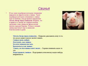 Свинья И уж самое недоброжелательное отношение выражено во фразеологии к свин