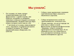 Мы узнали: Кот и кошка не очень хорошо охарактеризованы в русской фразеологии