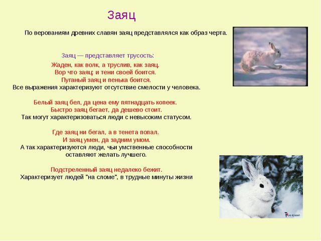 Заяц — представляет трусость: Жаден, как волк, а труслив, как заяц. Вор что...