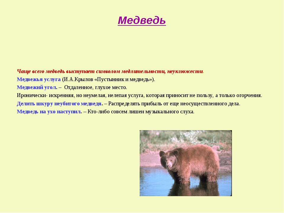 Медведь Чаще всего медведь выступает символом медлительности, неуклюжести. Ме...