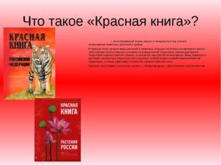 Что такое «Красная книга»? Кра́сная кни́га— аннотированный список редких и н