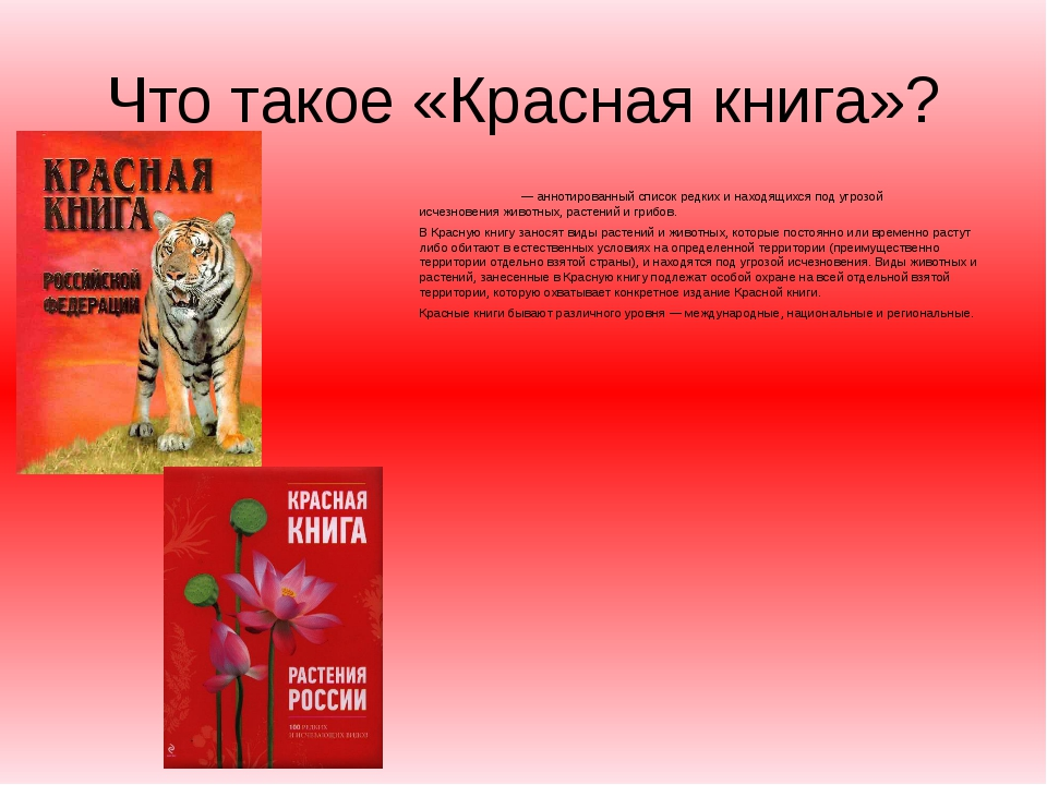 Что такое «Красная книга»? Кра́сная кни́га— аннотированный список редких и н...