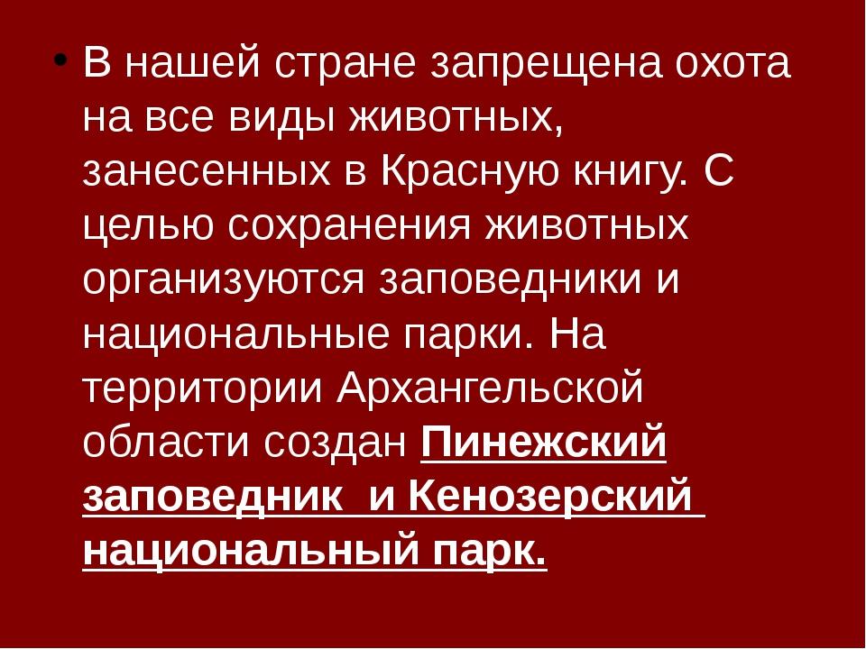 В нашей стране запрещена охота на все виды животных, занесенных в Красную кн...