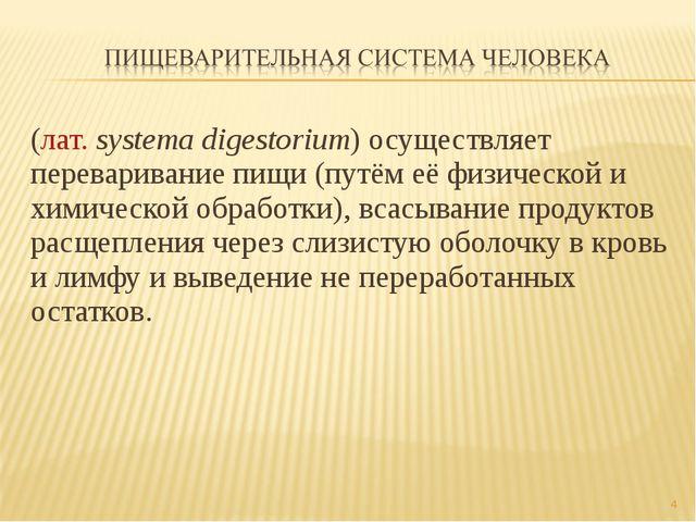 (лат.systema digestorium) осуществляет переваривание пищи (путём её физическ...