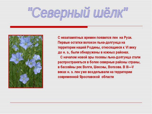 С незапамятных времен появился лен на Руси. Первые остатки волокон льна-долг...