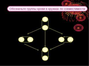 Обозначьте группы крови в кружках по совместимости