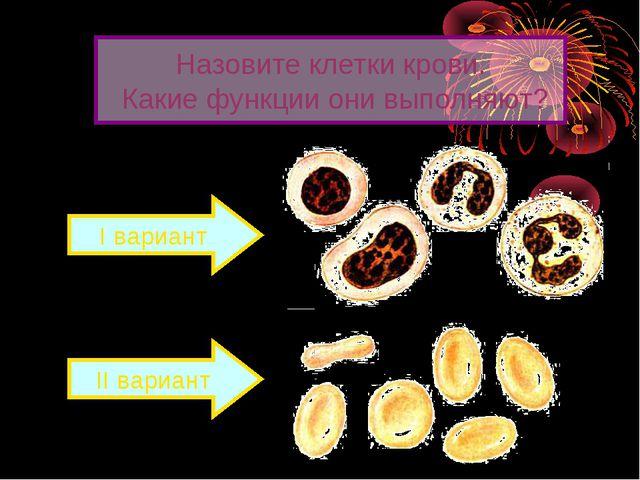 Назовите клетки крови. Какие функции они выполняют? I вариант II вариант