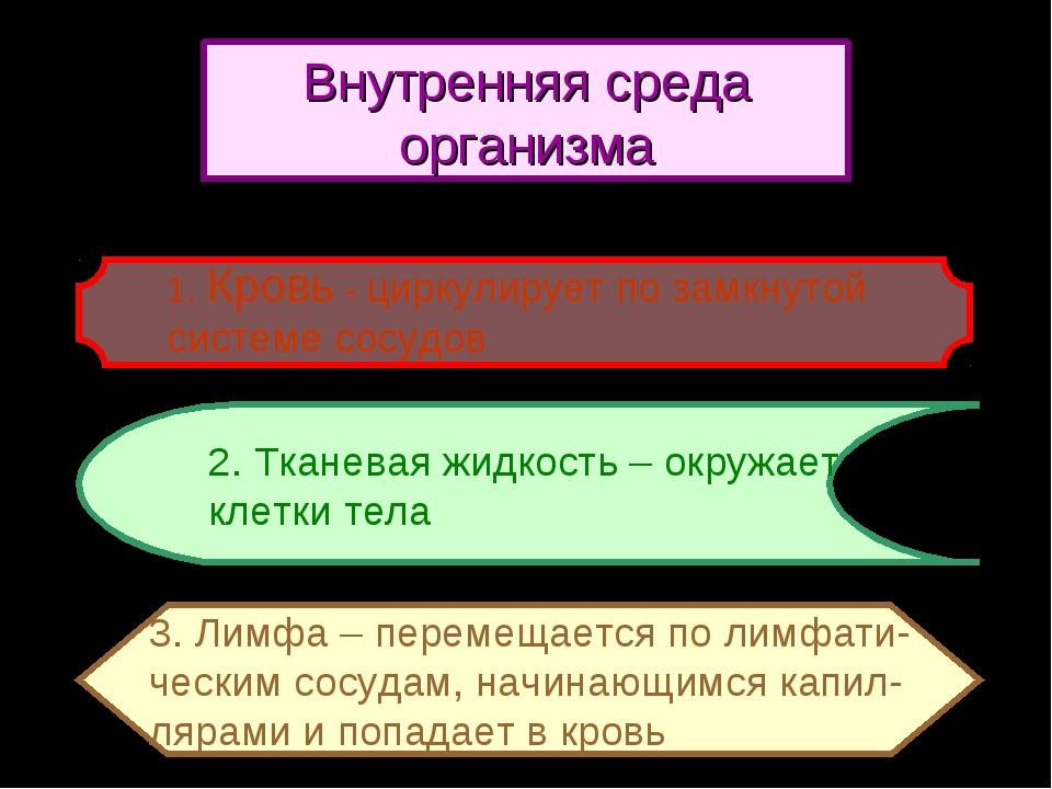 2. Тканевая жидкость – окружает клетки тела 3. Лимфа – перемещается по лимфат...