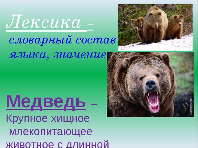 Лексика – словарный состав языка, значение. Медведь – Крупное хищное млекопи...