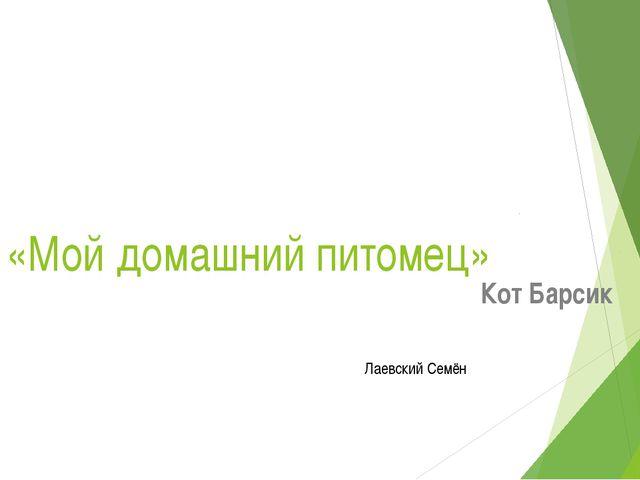 «Мой домашний питомец» Кот Барсик Лаевский Семён