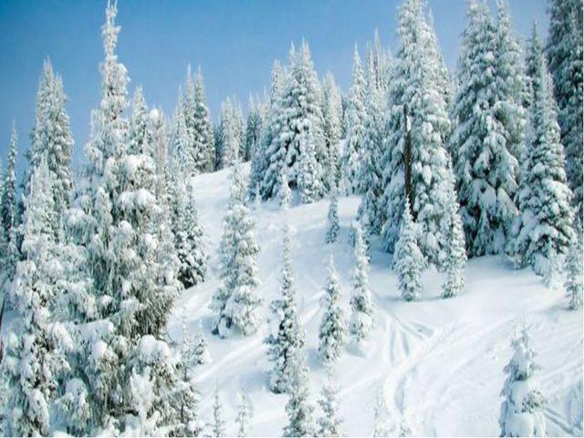 . Зима