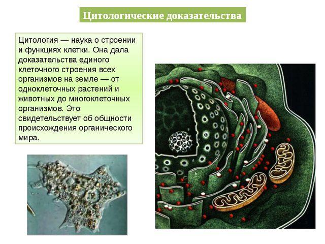 Цитологические доказательства Цитология — наука о строении и функциях клетки....