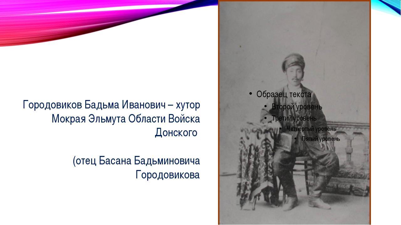 Я родился в 1910 г. на х. Мокрая Эль- мута Пролетарского района Сальского ок...