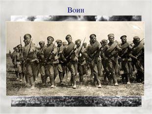 Воин Армии насчитывали до 5000 оловянных солдатиков