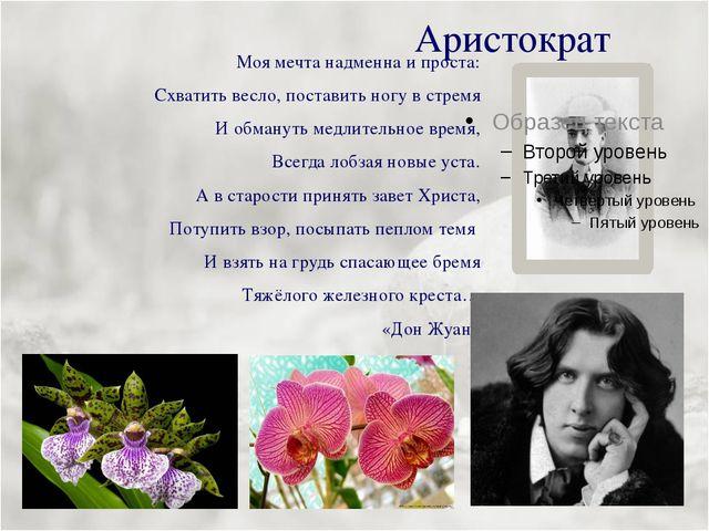 Аристократ Моя мечта надменна и проста: Схватить весло, поставить ногу в стре...