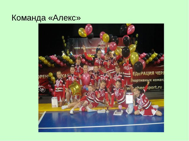 Команда «Алекс»