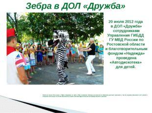 Зебра в ДОЛ «Дружба» Ребята не только пели песни о ПДД и танцевали, но ещё и