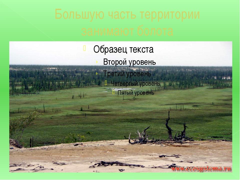 Большую часть территории занимают болота