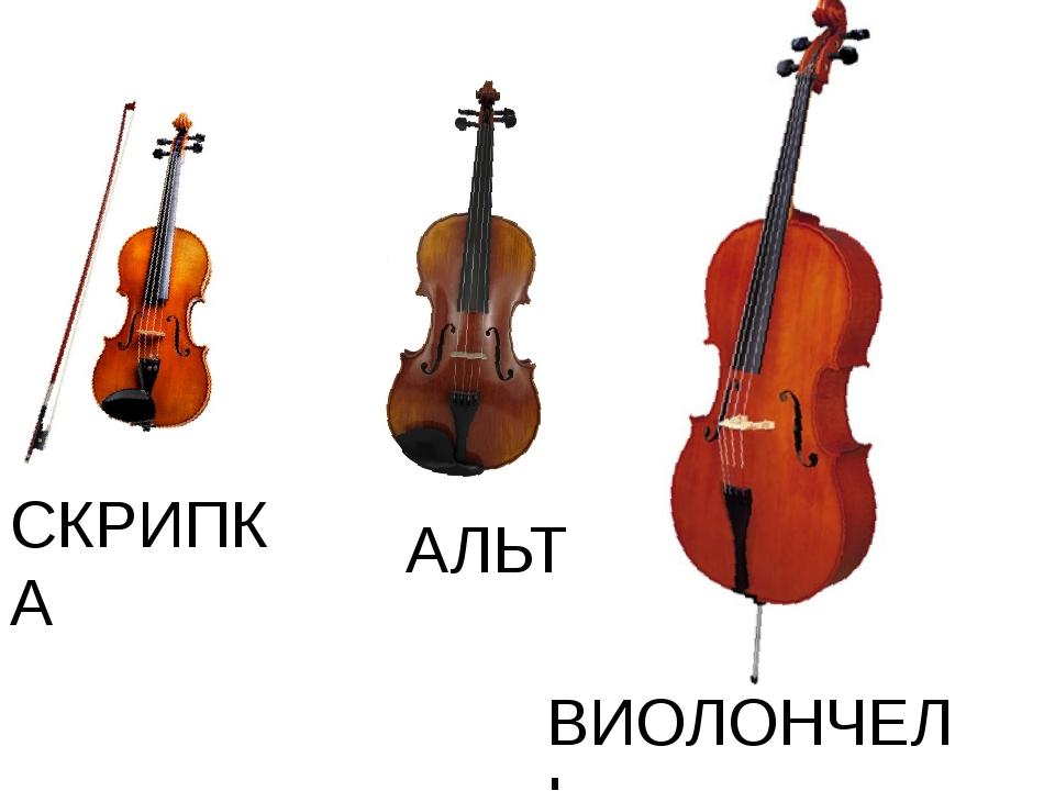 СКРИПКА АЛЬТ ВИОЛОНЧЕЛЬ