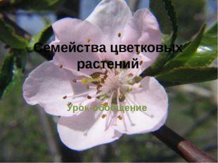 Семейства цветковых растений Урок-обобщение