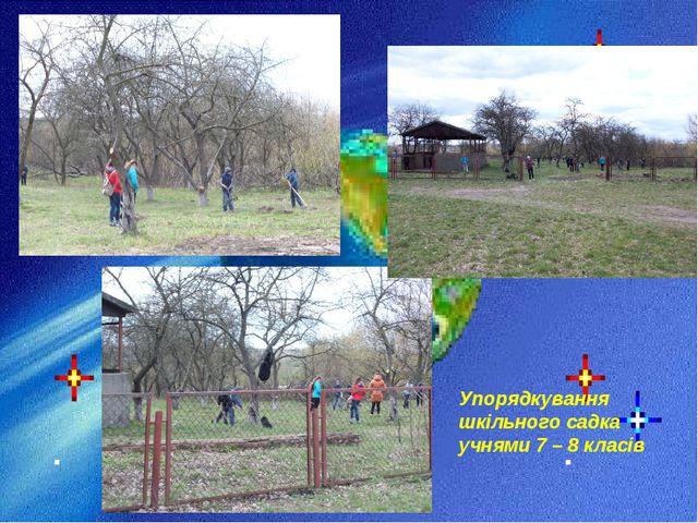 Упорядкування шкільного садка учнями 7 – 8 класів