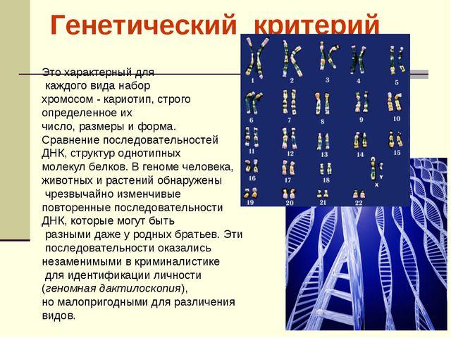Это характерный для каждого вида набор хромосом - кариотип, строго определен...
