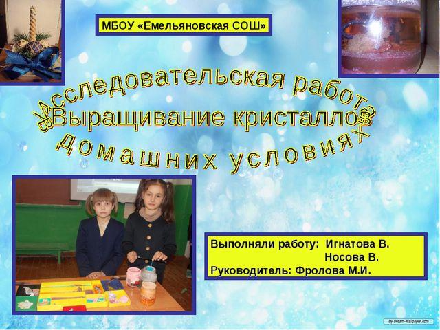 Выполняли работу: Игнатова В. Носова В. Руководитель: Фролова М.И. МБОУ «Емел...