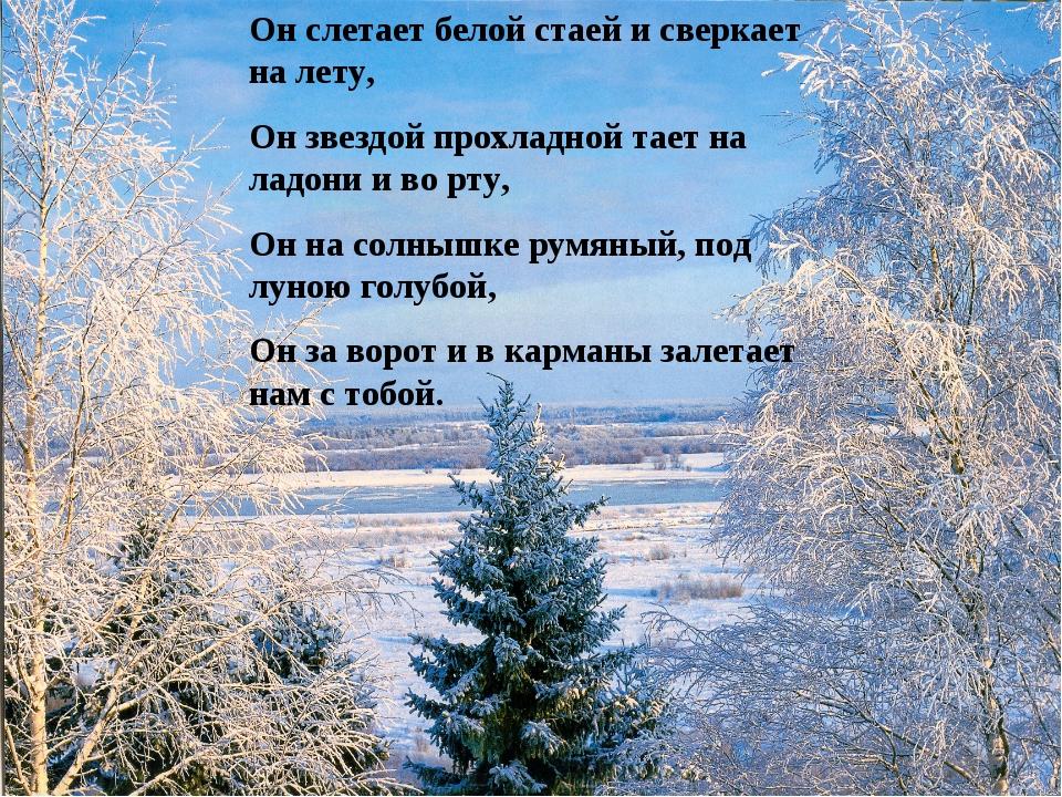 Он слетает белой стаей и сверкает на лету, Он звездой прохладной тает на ладо...