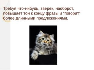 """Требуя что-нибудь, зверек, наоборот, повышает тон к концу фразы и """"говорит"""" б"""