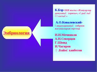 К.Бэр-1828 жылы «Жануарлар дамуының тарихы», «Ұрықтық ұқсастық» А.О.Ковалевск