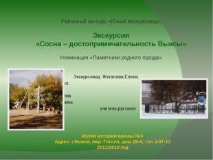 Музей истории школы №6 Адрес: г.Выкса, мкр. Гоголя, дом 28-А, тел 3-07-13 201
