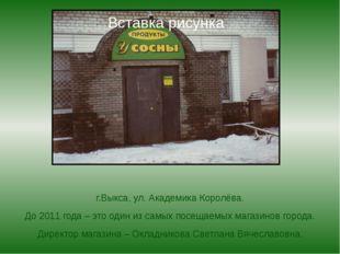 г.Выкса, ул. Академика Королёва. До 2011 года – это один из самых посещаемых