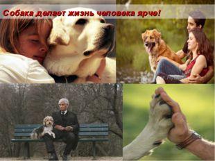 Собака делает жизнь человека ярче!