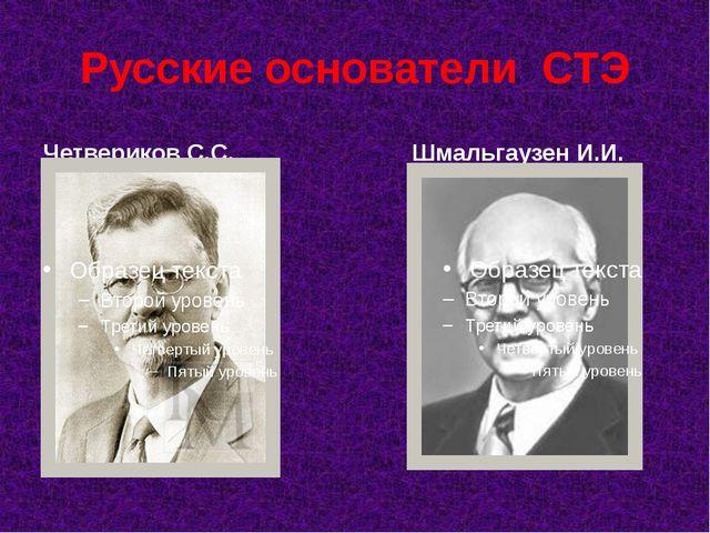 Русские основатели СТЭ Четвериков С.С. Шмальгаузен И.И.