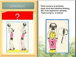 а) вывихи фаланг пальцев; б) ушиб туловища; в) повреждения коленного состава.