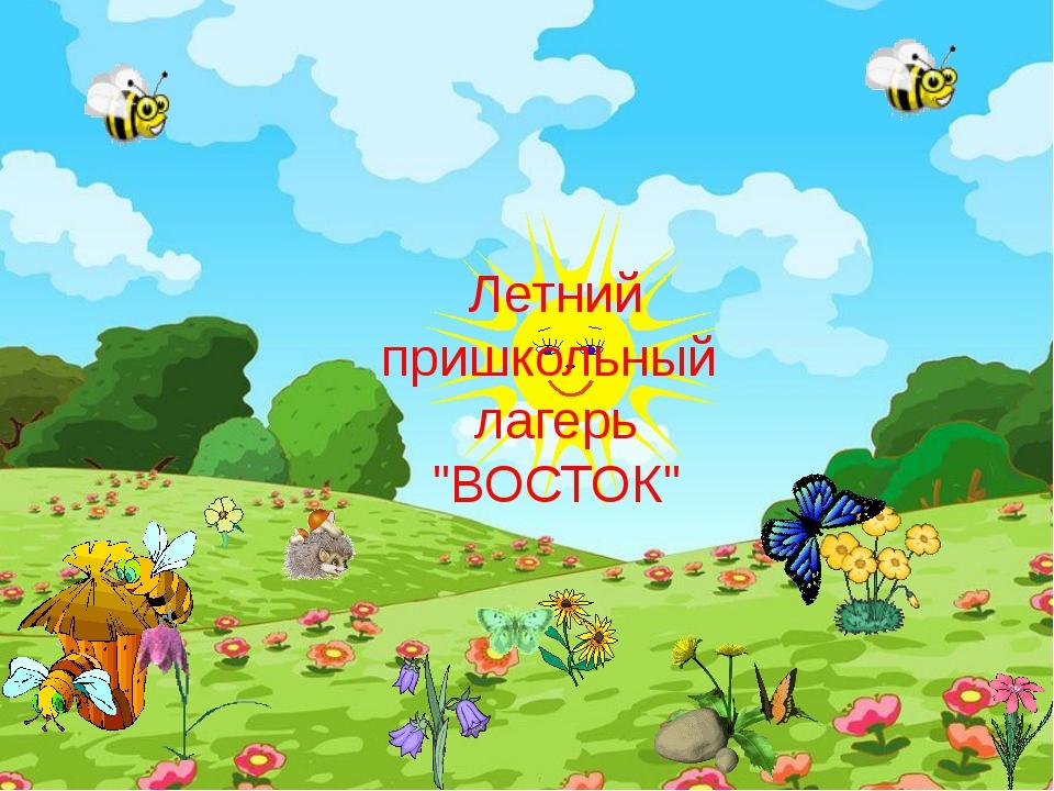 """Летний пришкольный лагерь """"ВОСТОК"""""""