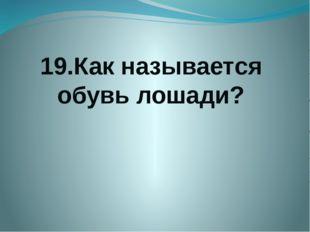 19.Как называется обувь лошади?